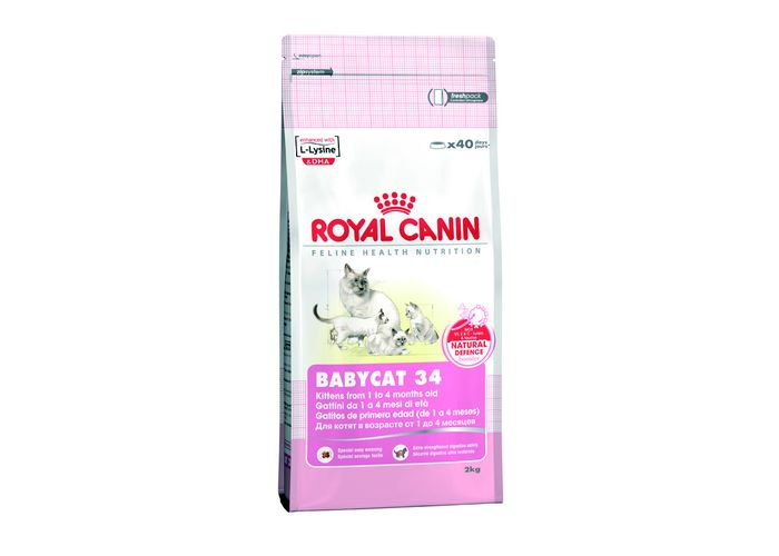 Mama корм royal canin