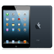 Apple iPad Mini 16Gb Wi-Fi Black (Черный)